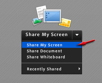screenshot of icon for screen sharing