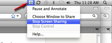 screenshot of the stop screen sharing command.
