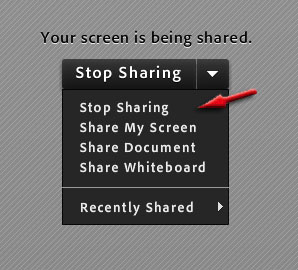 "screenshot of the icon for ""stop sharing"" desktop"